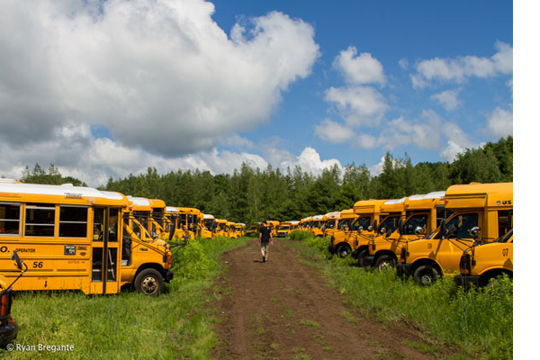 School Bus For Sale - How To Find Them