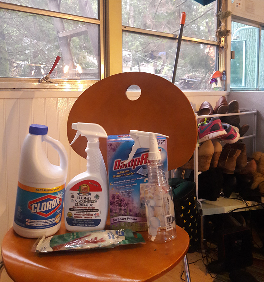 bleach cleaning sprays skoolie interior